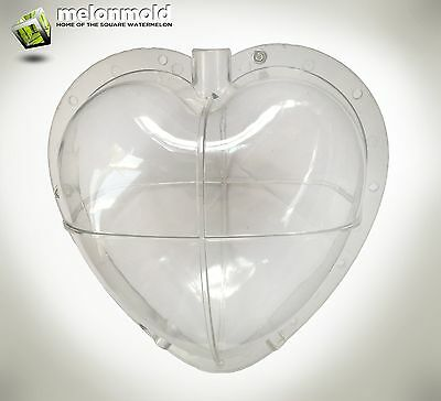 Heart Shaped Watermelon Mold For Growing Heart Shaped Fruit