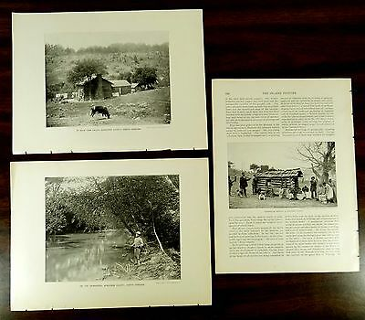 Black Americana 1897 Buncombe County North Carolina John H. Tarbell 2 Prints +