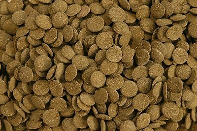 Premium Algae Wafers With Spirulina EVERY SIZE Fish Food Pleco Catfish Loach