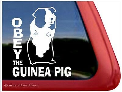 OBEY the Guinea Pig ~ High Quality Vinyl Window Decal Stickers
