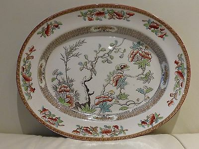 W.T.COPELAND & SONS Antique INDIA TREE Plate, February 1879- Very Rare!