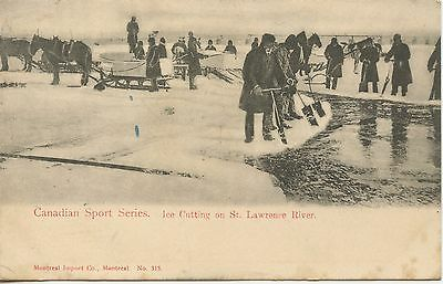 Postcard / Canada Canadian Sport Series Ice Cutting On St. Lawrence River
