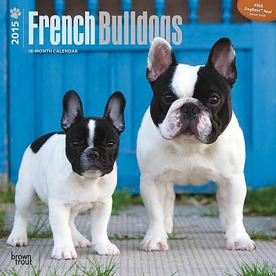 French Bulldogs 2015 Wall Calendar