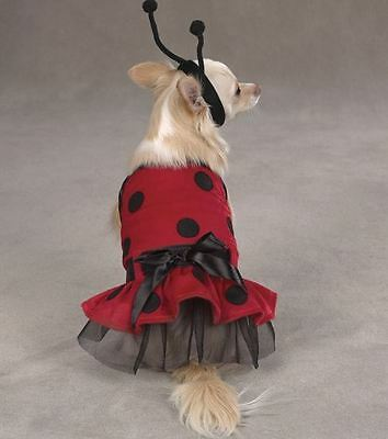 Lady Bug Dog Puppy Costume Halloween Polka-Dot Red Black Size Large only