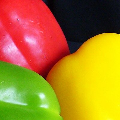SWEET PEPPER - CALIFORNIA WONDER - 40 seeds of each colour [Red and Yellow]