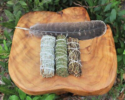 Sage White Cedar & Blue Smudge Sticks Sampler 3 Pack And Feather Smudging