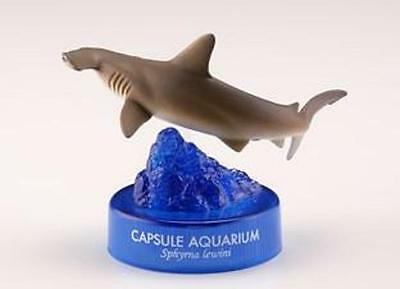 RARE NEW Kaiyodo Japan Aquarium Aquatales Scalloped Hammerhead Shark Fish Figure