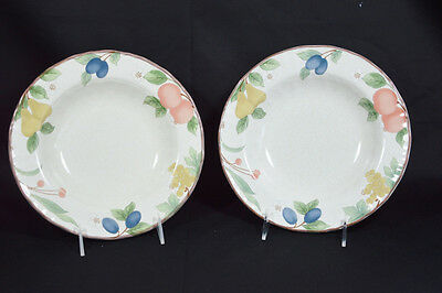 Mikasa Fruit Panorama Set of Two Rimmed Soup Bowls