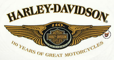 Harley Davidson 110Th Anniversary Oval Decal - Made In Usa  - Obsolete Design