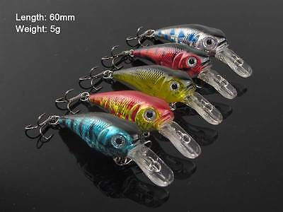 5 x Chubby Body  Diving Fishing Lures Crankbaits 60mm 5g Fishing Tackle A Bream