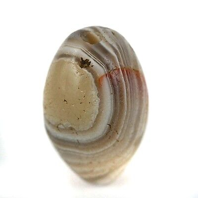 Collectible Old -  Ancient World Eye Agate Stone Bead 22 x 14mm