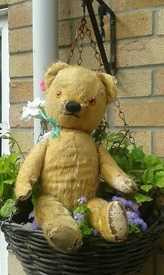 Antique chad valley jointed mohair teddy bear
