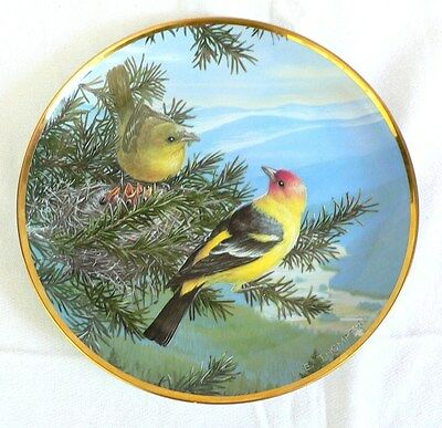 Decorative plate Favorite American Songbirds 0333T River Shore Western Tanager