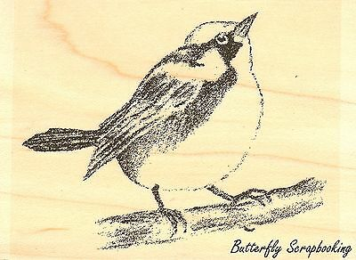 Little Bird Garden Wood Mounted Rubber Stamp Impression Obsession D8948 New