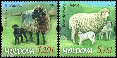 Moldova - 2014 - The Sheep Breeds, 2v