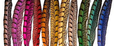 "Pheasant Tail Feathers 10""-14"" Various Colours, Fly Tying Art& Craft   Hats"
