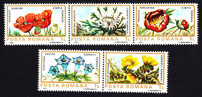 Romania 1983 Mint MNH Flora of European Protected Areas Complete Stamps Set
