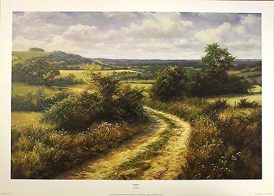 """DAVID DIPNALL """"Byway"""" countryside path OUT-OF-PRINT! SIZE:50cm x 75cm  RARE"""
