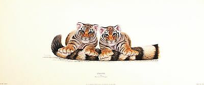 WARWICK HIGGS Stripes TIGER CUBS humerous art Print NEW SIZE:17cm x 52cm  RARE
