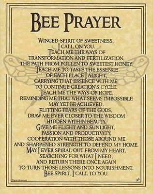 BEE PRAYER - POSTER  Wicca Pagan Witch Witchcraft Goth Punk BOOK OF SHADOWS