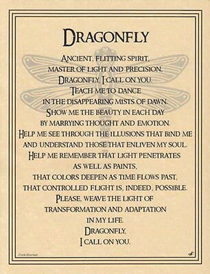 DRAGONFLY PRAYER POSTER A4 SIZE Wicca Pagan Witch Witch Goth BOOK OF SHADOWS