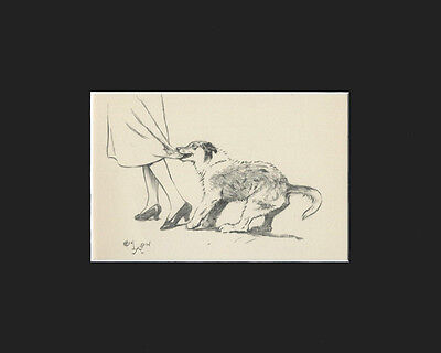 Vintage Cecil Aldin 1939 Print: Collie Dogs Matted GETTING MAMA's ATTENTION!
