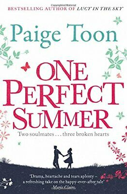 One Perfect Summer by Toon, Paige Book The Cheap Fast Free Post