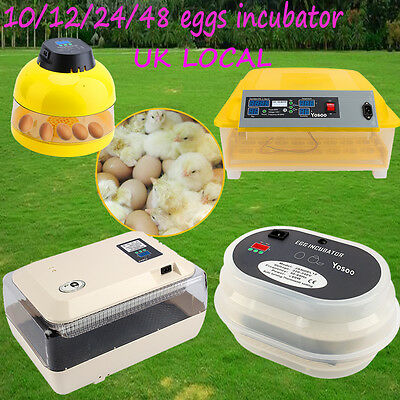 Automatic Egg Incubator 10 24 48 60 96 Eggs Poultry Harcher Chicken Incubator Uk