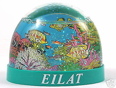 Eilat Red Sea Fish & Coral Reef Snow Globe Dome Diving Israel Holy Land Souvenir