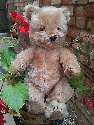 Antique cute chiltern ~ teddy bear jointed mohair, ~ george~