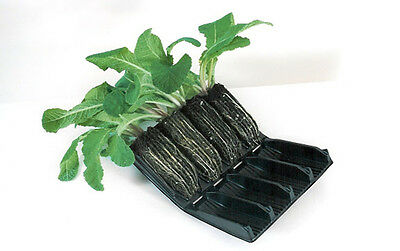 Compact Rootrainers books propagator cells root trainers vegetables plants 9cm