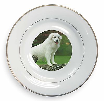 Pyrenean Mountain Dog Gold Leaf Rim Plate n Gift Box Christmas Gift