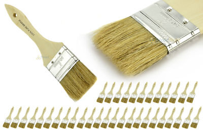 """36 NEW 2"""" Disposable Adhesive Paint / Fiber Glass Resin Gelcoat Chip Brush Pack"""