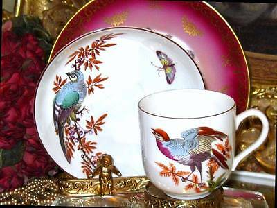 Mottahedeh CHELSEA BIRDS INSECT BUTTERFLY Cup & Saucer