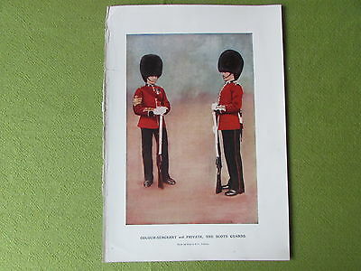 Colour Sergeant & Private the SCOTS GUARDS Photo by Gregory & Co London c 1900's