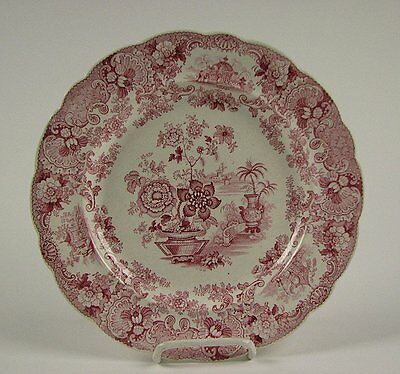 Antique Red Staffordshire Transferware Plate Japan Flowers