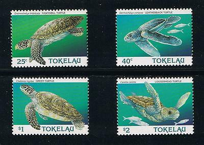 Tokelau Sea Turtles Set