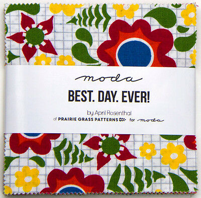 Best Day Ever Moda Charm Pack 100% Cotton 5 Inch Precut Fabric Squares 24010PP