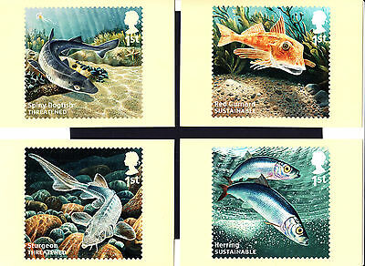 Great Britain 2014 Stamp Maximum Cards Sustainable Fish Set of 10 New