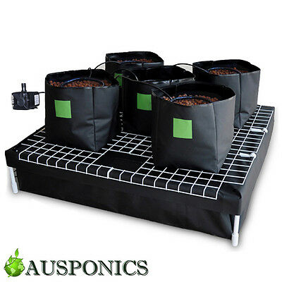 Complete 5 Bag Hydroponic System 100 Watering Growing Kit Water Pump Grow Tent