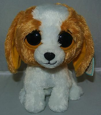 "~Ty Beanie Baby Boos  ""Cookie"" the Dog 6"" size ~ Free Shipping RETIRED"