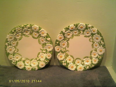 A Cute Pair of Mottahedeh Daisy Plates
