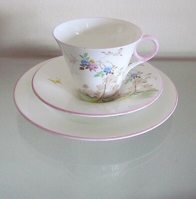 "SHELLEY WILD FLOWERS Trio=""IDEAL CHINA""=WR076=Pink Rims=Unusual & Beautiful!!!!!"