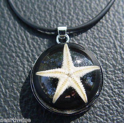 REAL STARFISH RESIN PENDANT Wicca Witch Pagan Goth NATURES PENTACLE PENTAGRAM
