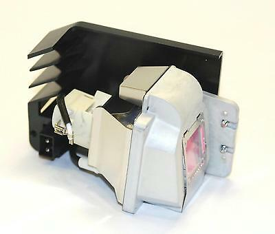 ViewSonic (RLC-034) Replacement Projector Lamp Bulb Module - 800102435