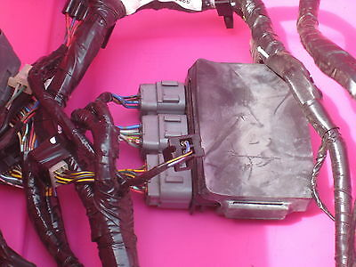 zx6r 2008 complete harness with relay box
