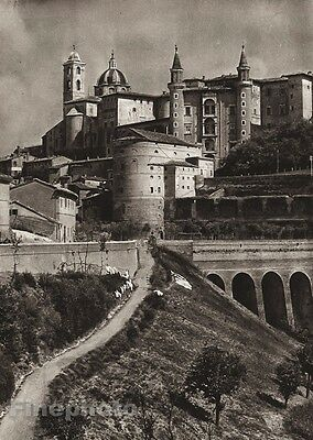 1925 Original ITALY Photo Gravure URBINO Cathedral Palace Architecture HIELSCHER