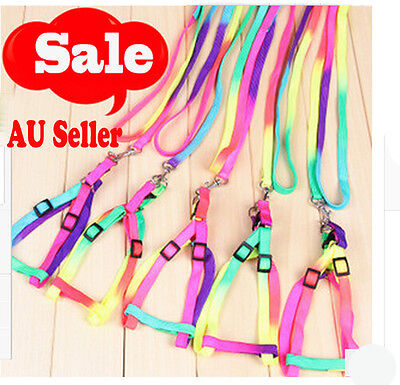Adjustable Pet Small Dog Puppy Cat Kitten Nylon Harness Collar Leash Lead Colour