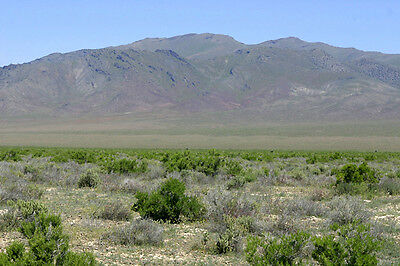 RARE! 40 ACRE RANCH NEAR TAHOE / RENO! PRIVACY AND VIEWS! MAKE AN OFFER!