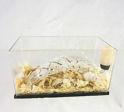Dollhouse Miniature Artisan Alice Zinn White Pet Mice in Cage